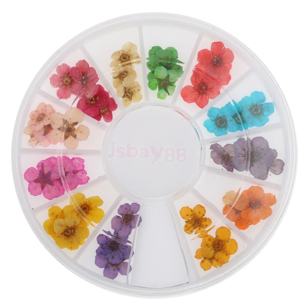 12 Colors 3D Dried Dry Flower Nail Art Wheel Decoration Manicure DIY Design