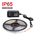 Waterproof IP65 LED Strip Light 5M 300Leds 3528SMD 12V 2A Power Supply Flexible Light Holiday Christmas Decoration Lamps Light