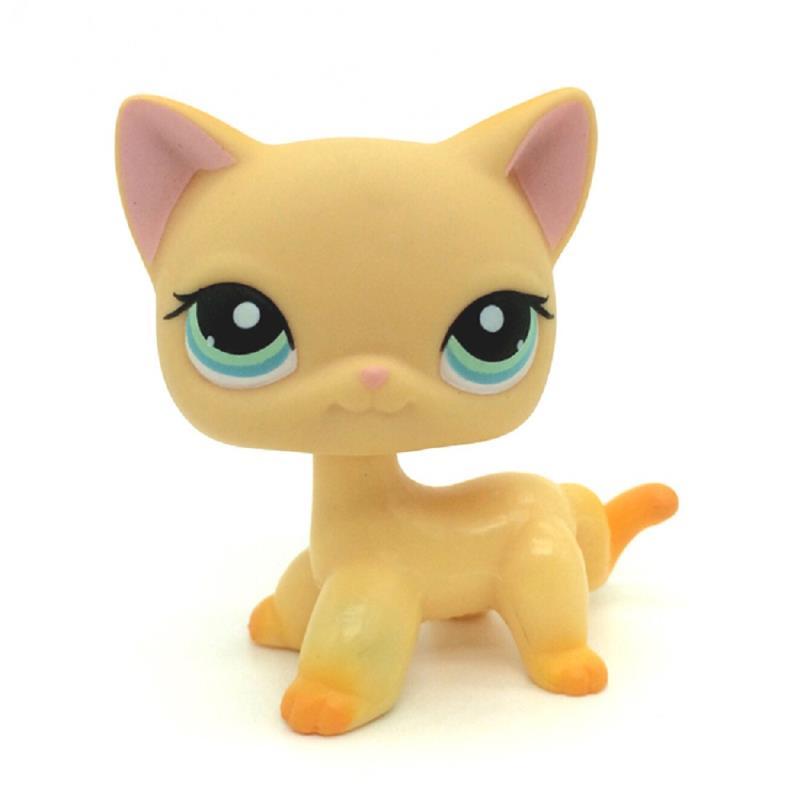 фото лпс только кошки прямой