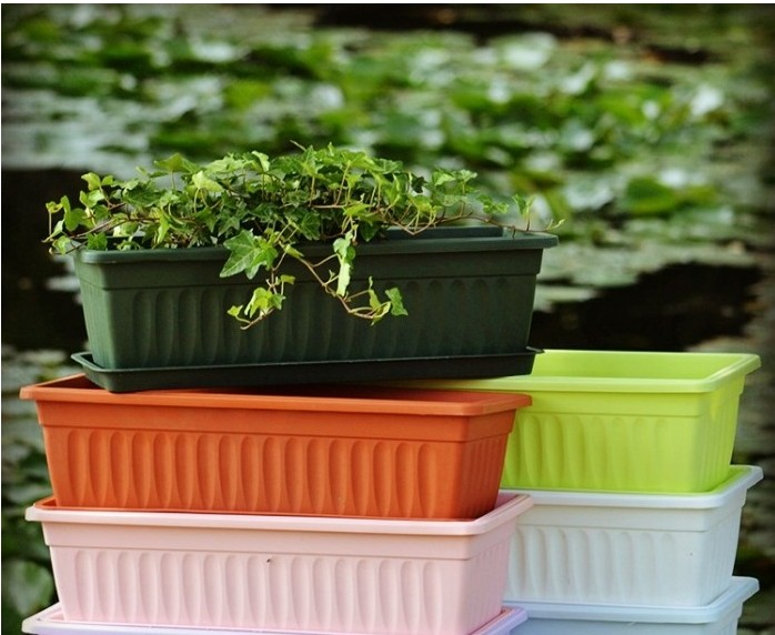 Vegetables and flower pots plastic rectangle plastic flowerpot grow vegetables balcony flower - Veggies that grow on balcony ...