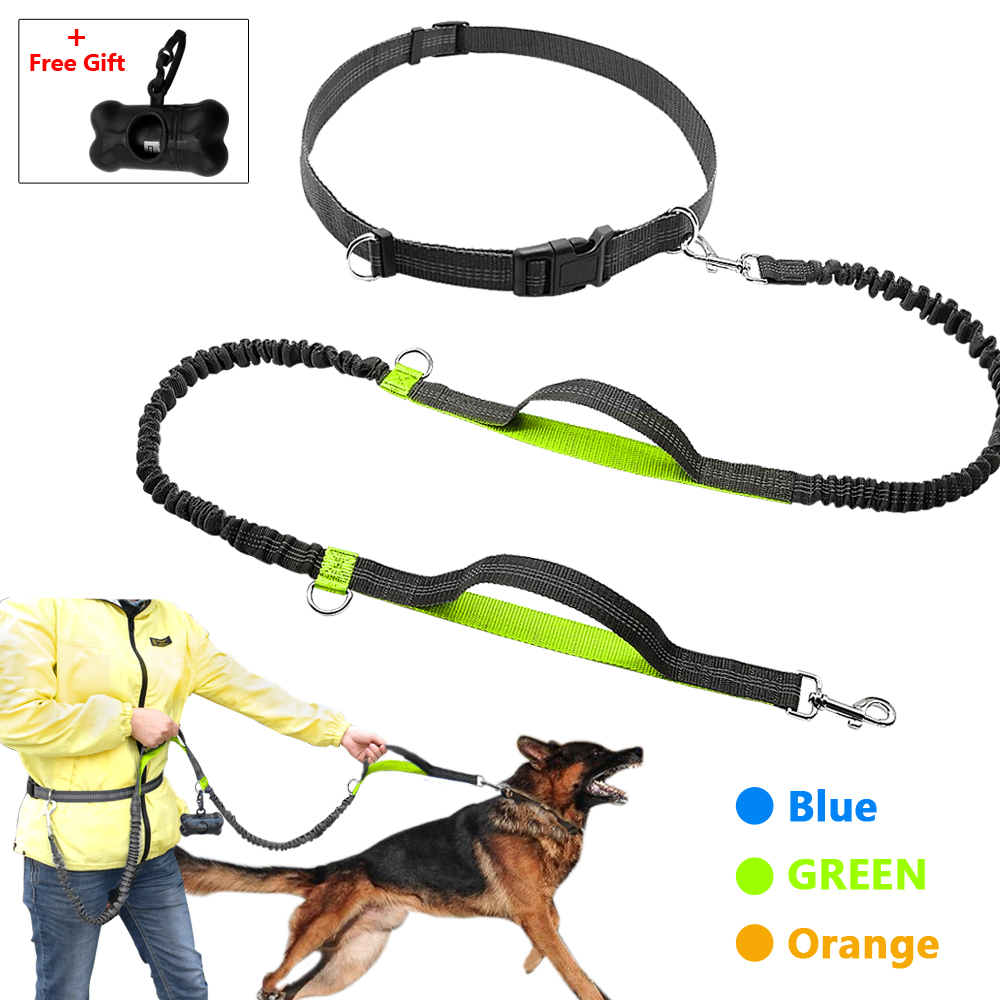 Retractable Hands Free Dog Leash för Running Dual Handle Bungee Leash Reflective för upp till 150 lbs Stora Dogs Free Bag Dispenser