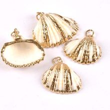 Natural threaded seashell Gold Plated sector shells for earring DIY handmade charms pendant Home decoration 5pcs TRS0268(China)