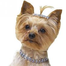Cute Small Pet Bling Rhinestone Collar-Stretch Neck Strap