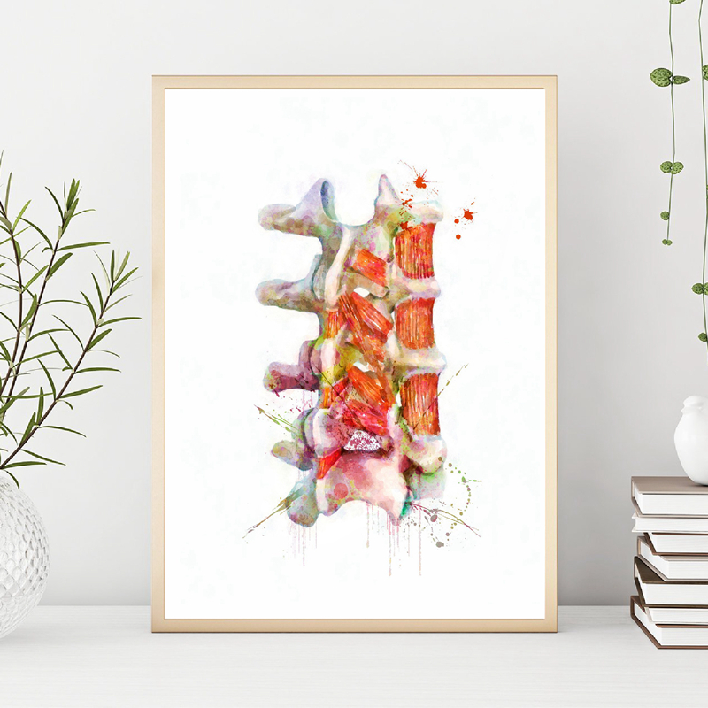 Human Spine Wall Art Painting