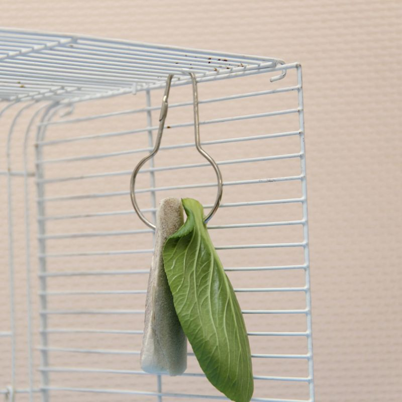 10 Pcs Parrots Birds Toys Food Cuttlefish Bone Hooks Pets Hanging Cage Supplies