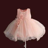 Baby Girl Dresses Embroidery Flower Girls Dress Ball Gown Newborn 1 Year Birthday Dress Kids Clothes