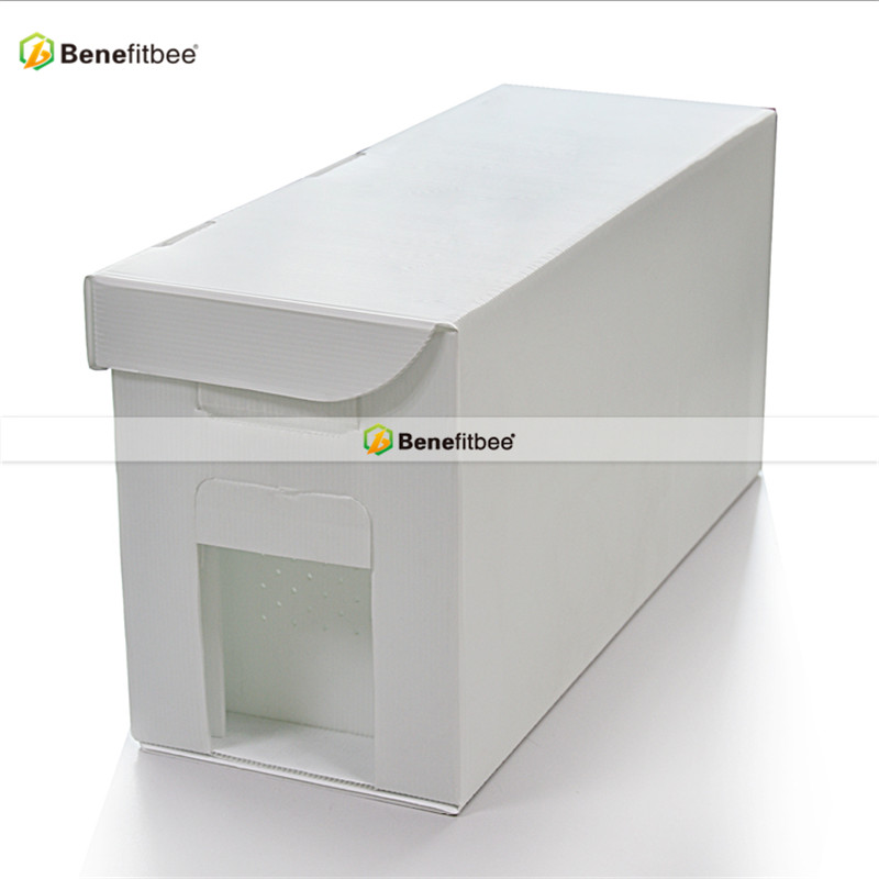 Bee hives Water Proof 5 Frame Plastic Bee Box Beehive Nuc Boxes bee ...