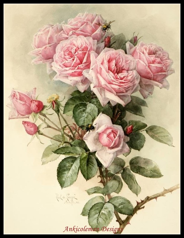 Needlework for embroidery DIY French DMC High Quality - Counted Cross Stitch Kits 14 ct Oil painting - Romantic Pink RosesNeedlework for embroidery DIY French DMC High Quality - Counted Cross Stitch Kits 14 ct Oil painting - Romantic Pink Roses