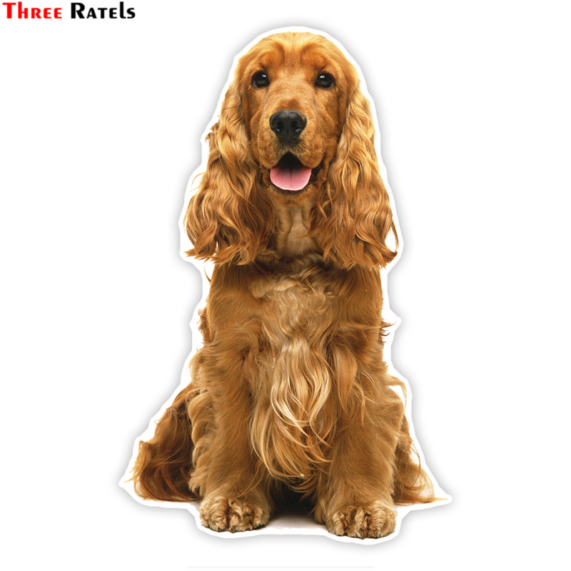 Three Ratels LCS001# 11X17cm Cute Cocker Spaniel Colorful Car Sticker Funny Car Stickers Styling Removable Deca