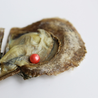 Wholesale 10pcs Vacuum Packed Oysters 6 7mm Akoya Light Red Round Pearls In Oyster Free Shipping