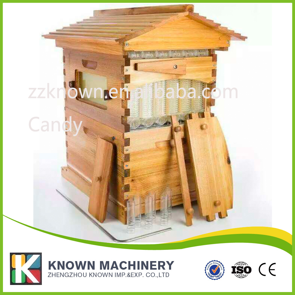 New design honey self flowing wood bee hive with frames 5 beekeeping bee hive frames honey container honey lattice produce box 250g