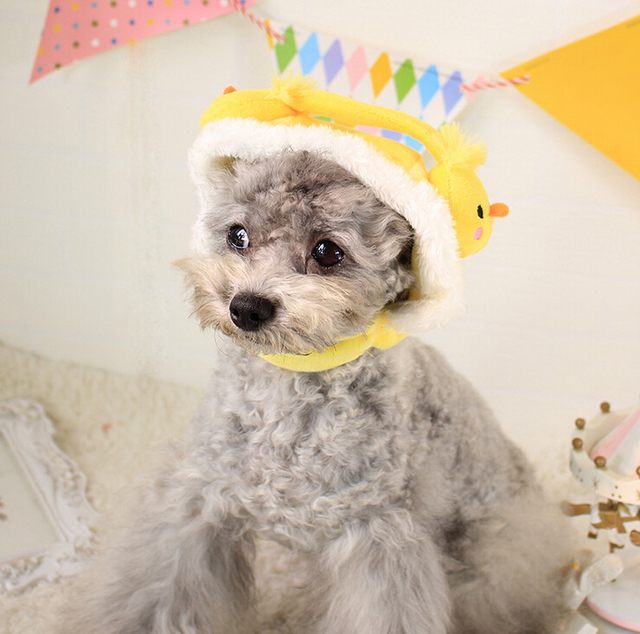 15PT19 Pet Products Dog Supplies Dog Accessories Grooming Dog Hat Cat Cap Cat Hat Headdress Cosplay Funny
