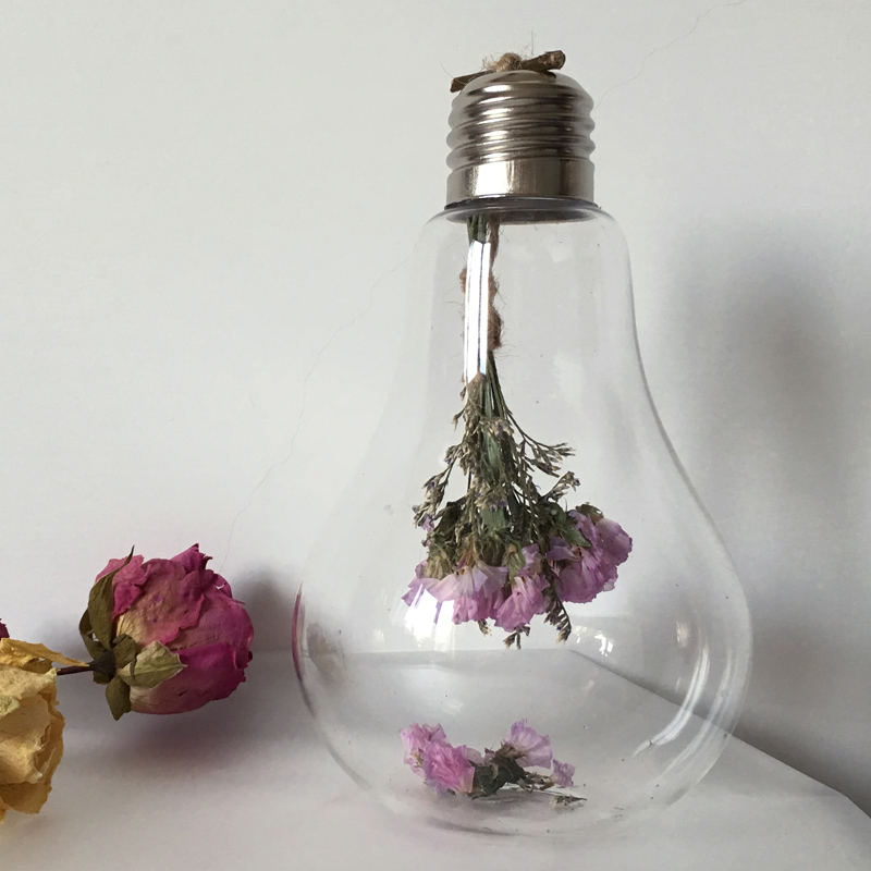 different style bulb shaped glass terrarium vase beautiful
