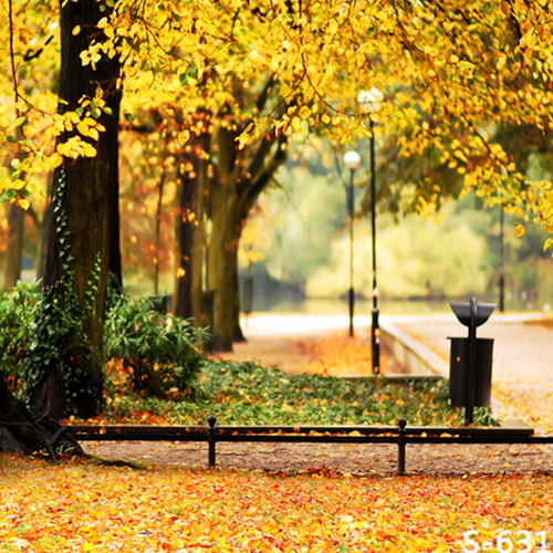 10x10ft Gold Trees Leaves Park Fence Road Lamps Autumn