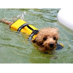 Swimming jackets clothes for dogs pet dog save life jacket safety clothes life vest dog clothes.jpg 250x250