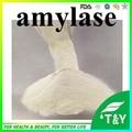 High Quality Amylase 50g/lot