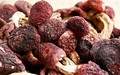 Hot sale1kg wild Russula health care food sale supply for Russula extract material polysaccharide