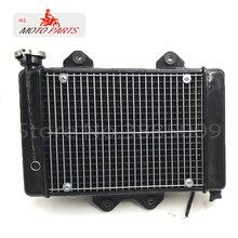 200cc 250CC кулер водяного охлаждения двигателя радиатор охлаждения 12 в вентилятор для moto rcycle moto Quad 4x4 ATV UTV запчасти