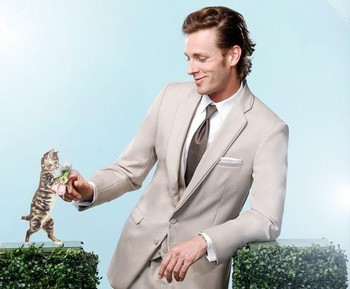 2016 New Style Groom Beige Groomsmen Notch Lapel Wedding/Dinner Suits Best Man Bridegroom (Jacket+Pants+Tie+Vest) B558