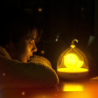 Cute Intelligent Touch LED Birdcage Lamps sensor night lights gift For Kids Bedroom baby feeding lamp Indoor Desk table lamps