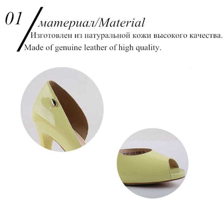 Material Details
