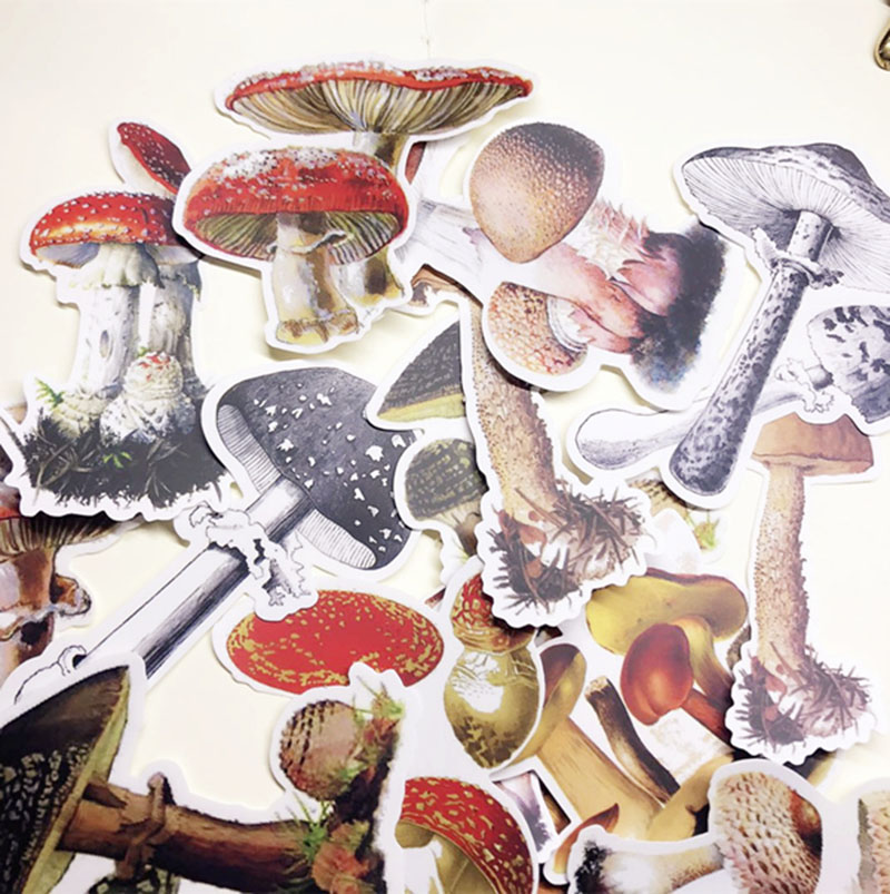 29Pcs Vintage Mushroom Stickers Scrapbooking Stickers Decorative Journal Happy Planner Sticker DIY Craft Photo Albums Card Make
