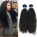 Grade 7A Unprocessed Afro Kinky Curly Brazilian Hair Brazilian Virgin Hair Curly Wavy Remy Human Hair 3 Bundles Curly Hair