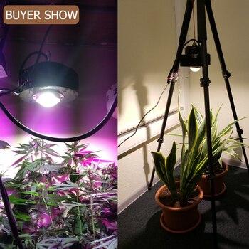 الطيف الكامل 100 واط COB LED تنمو ضوء CXB3590 CXB2530 للنباتات داخلي تزايد مصباح 3500K بذور زهرة تزايد Fitolampy أضواء