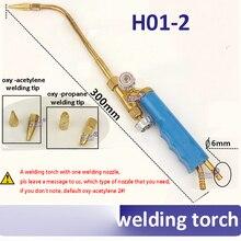 H01-2 Mini Gas Welding Torch oxy-acetylene oxy-propane Repair welding torch oxygen gas welding gun with 1pcs welding nozzle