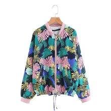Compra edg jacket y disfruta del envío gratuito en