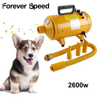 Professional 2600W Pet Dryer Low Noise Dog hair Dryer Adjustable Cat Grooming Air Blower Adjustable temperature with 3 nozzles