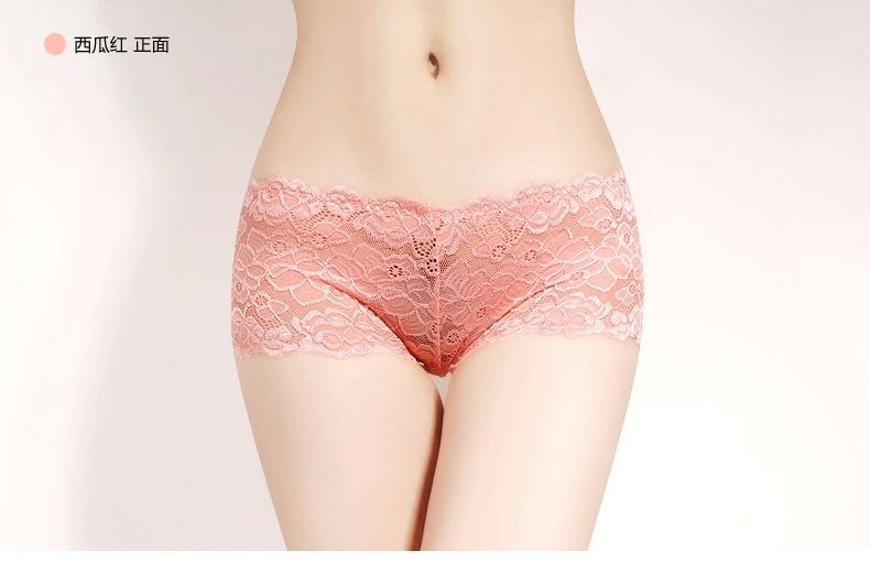 Aq Sexy Lingerie Hot See Through Lace Panty Ladies Boyshort Sexy Lace Underwear Women Intimates Sexy