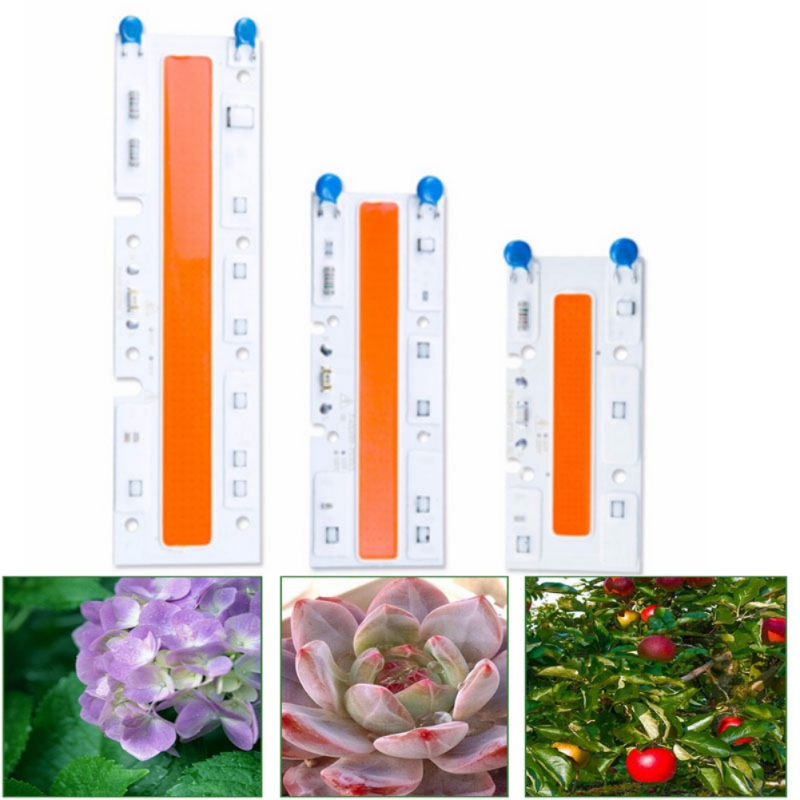 30W 50W 70W Indoor Full Spectrum LED COB Chip Lamp Grow Light Plant Growth Lamps 220/110V
