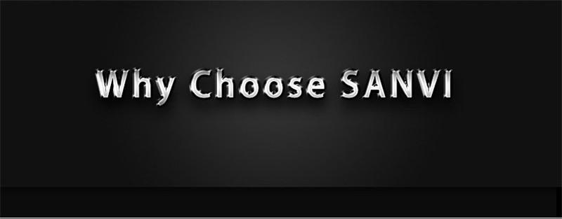 professional car lights supplier SANVI (1)