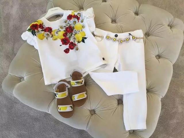 2016 Marca o Verão Flor Crianças Roupas 2 pcs conjunto de roupas infantis meninas impressão 3-13Y roupa das meninas borboleta manga t-shirt + calças