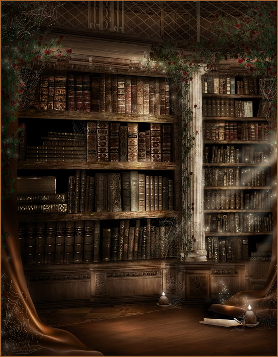Halloween Chamber of secret photography backdrop magic books photo backgrounds for photo studio photographer props photophone ves vmd 2