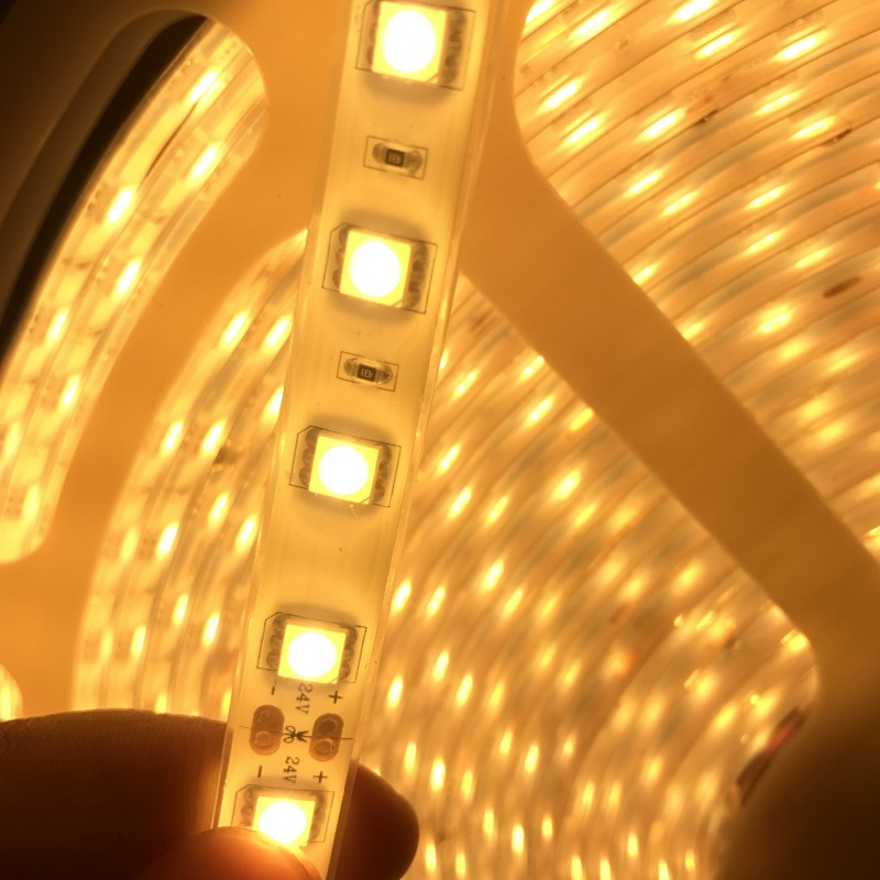 20M roll 24V LED Strip Light SMD 5050 60leds M 1200leds White Warm White RGB Waterproof