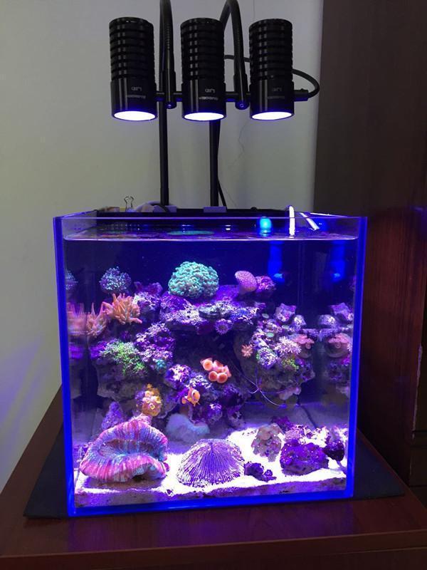 Marine LED Light Coral SPS LPS Grow Mini Nano Aquarium Sea Reef Tank White Blue Purple Hang On Bend Fix