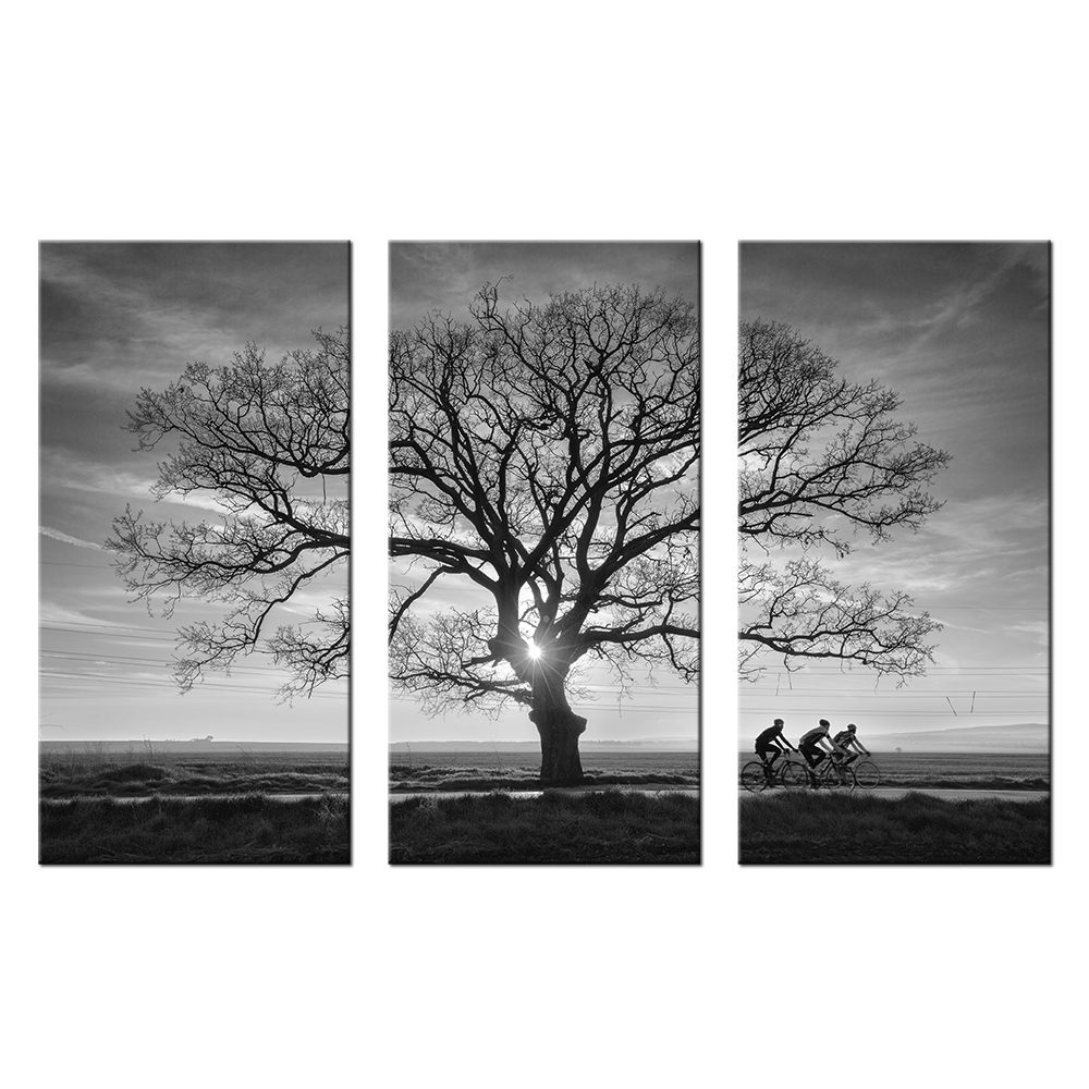 Sunset Landscape Painting Black And White Tree Branches ...