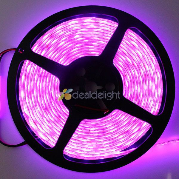 Pink LED Strip Light SMD 5050 60LED/M Lamps DC12V Flexible Ribbon tape ip65 waterproof L ...