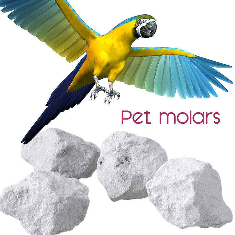 US $0 89 11% OFF|Pet Parrot Hamster Molar Stone Teeth Grinding Pet Small  Animal Bird Supplies papegaai Drop shipping-in Bird Toys from Home & Garden