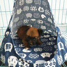 2019 NEW Comfortable Pet Cat Dog Conical Sleeping Bed Basket Hammock Window Cage