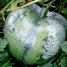 WHISM, большой размер, пластиковая прозрачная форма в форме сердца, квадратная форма для выращивания арбуза, Прозрачная форма для выращивания фруктов, формирующая форма, садовый поставщик