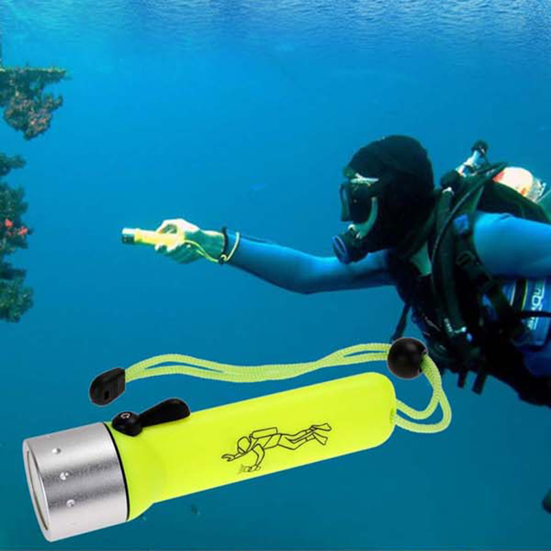 2000LM Professional LED Torch Lantern Lighting Light Underwater Diving Flashlight Torch Waterproof Portable Lamp professional torch