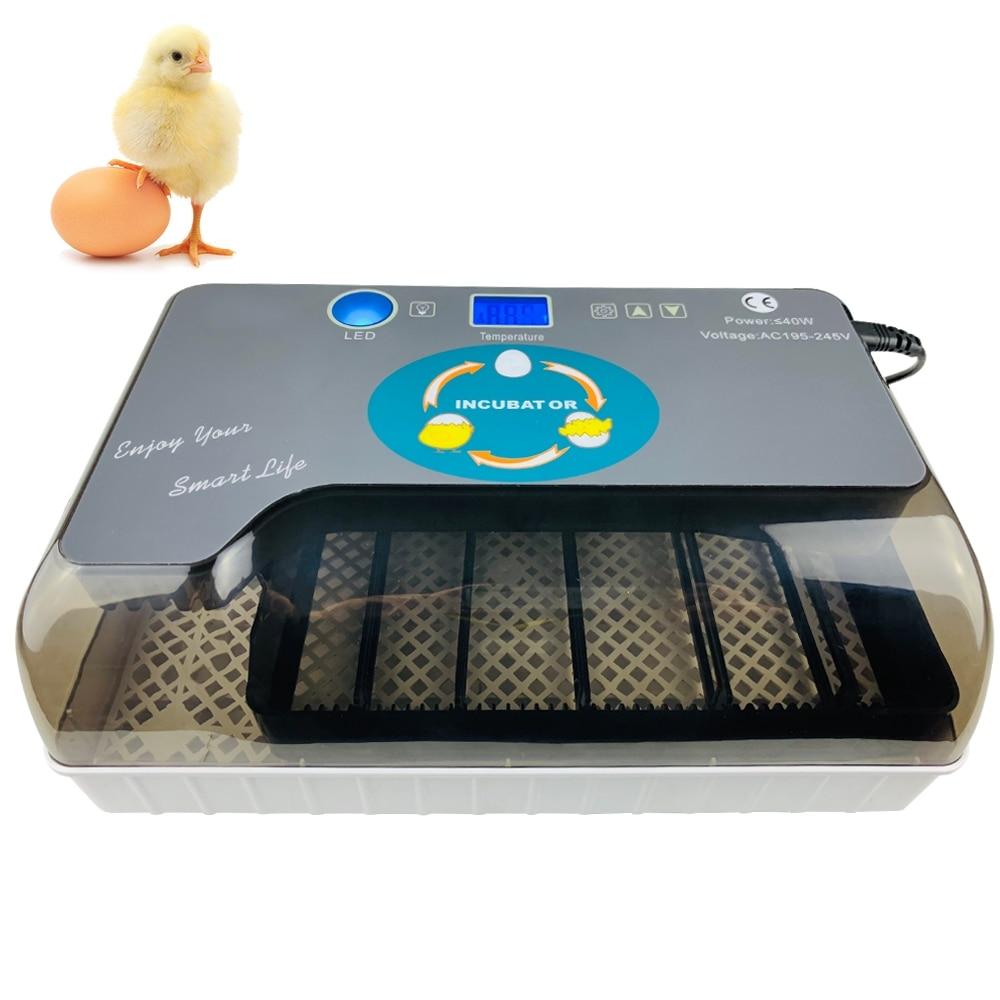 Digital Egg Incubator Automatic Egg Hatcher Automatic Turning 12 Eggs Chicken Birds Quail Brooder Egg Incubator