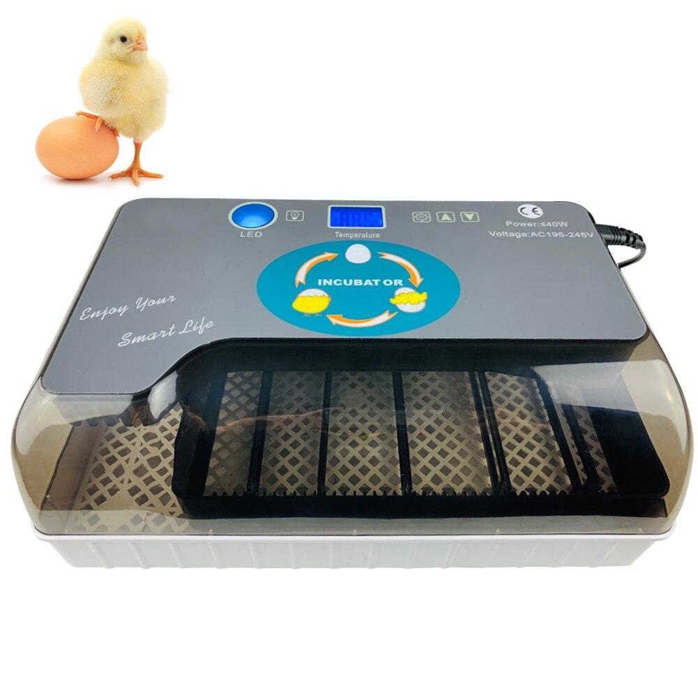 Cyfrowa jajko inkubator automatyczne jaj Hatcher automatyczne toczenie 12 jaj kurczaka ptaków przepiórki jaj nasiadka jaj w inkubatorze w Produkty do nawożenia i nawadniania od Dom i ogród na  Grupa 1
