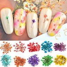 УФ Гель лак для маникюра, 12 шт./кор. 3D настоящие сухоцветы для украшения ногтей в виде листьев