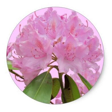 Купить с кэшбэком 1.5inch Pink Rhododendron Flowers Classic Round Sticker