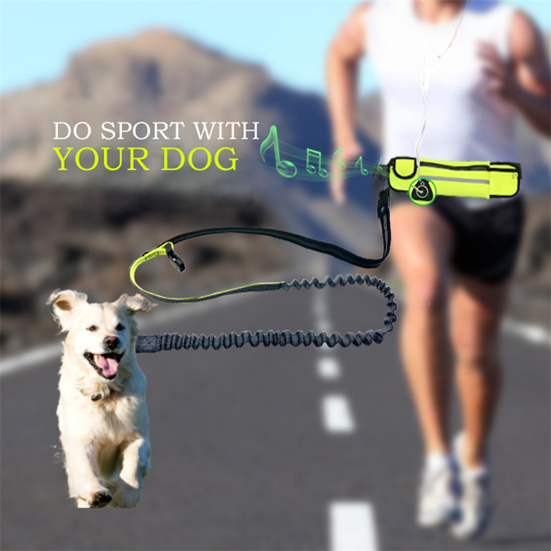 Pet Dog Running Leashes Hands Freely for Walking Dog Leash Rope with Waterproof Waist Bag Jogging Dog Collars Leash Belt Pouch