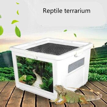 Breathable Grid Plastic Transparent Reptiles Living Box Reptile Terrarium Ideal Habitat for Scorpion Spider Ants Chameleon